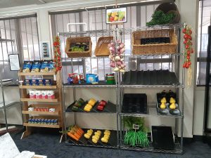 Retail display products company Auckland